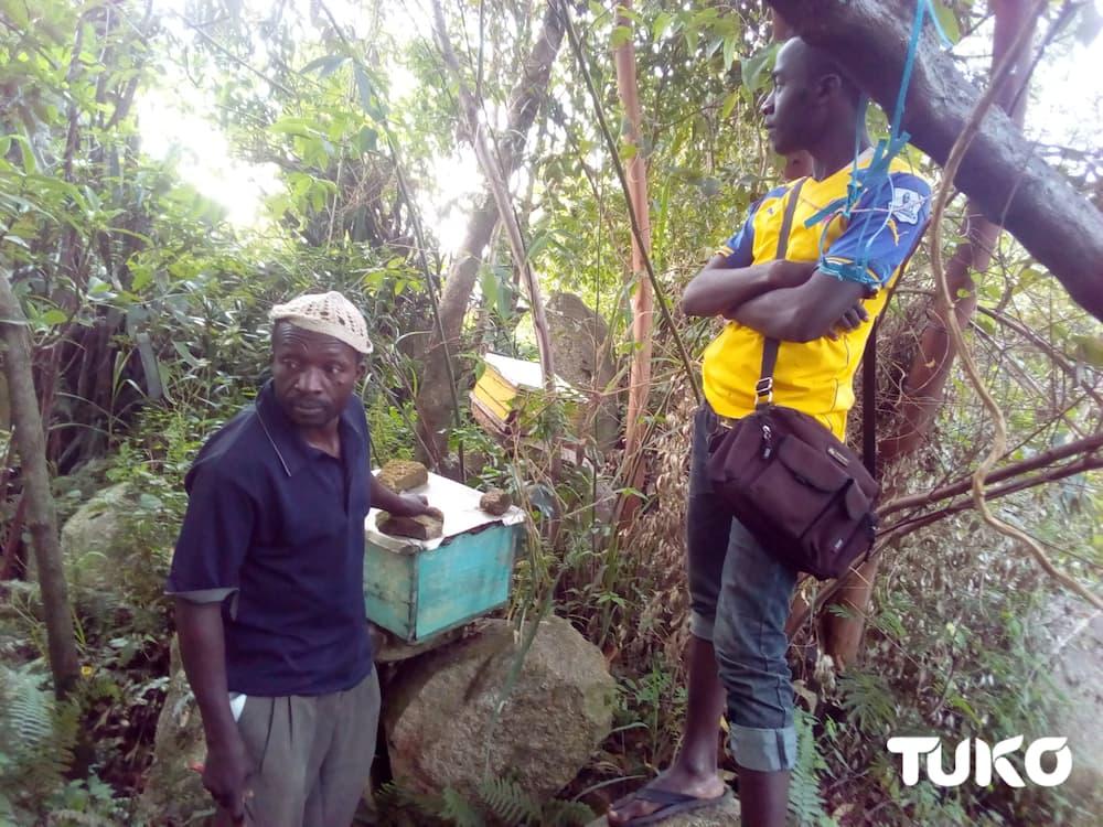 Vihiga man overcomes poverty sting through bee keeping