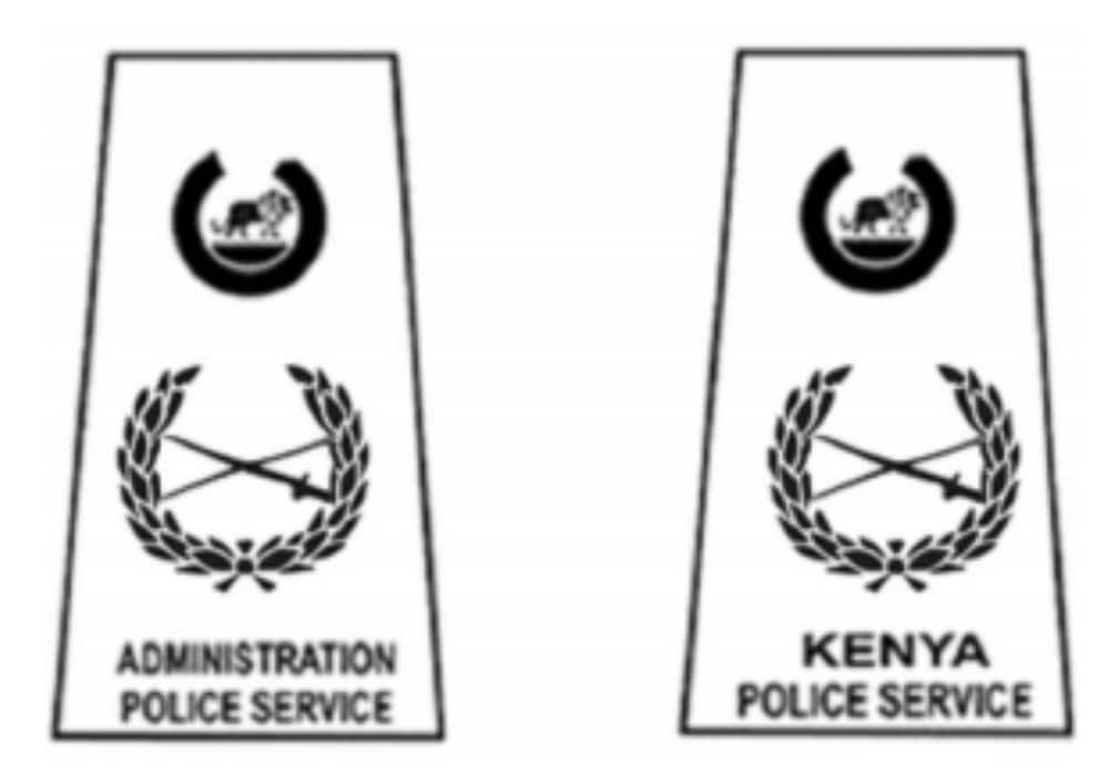 police ranks and badges