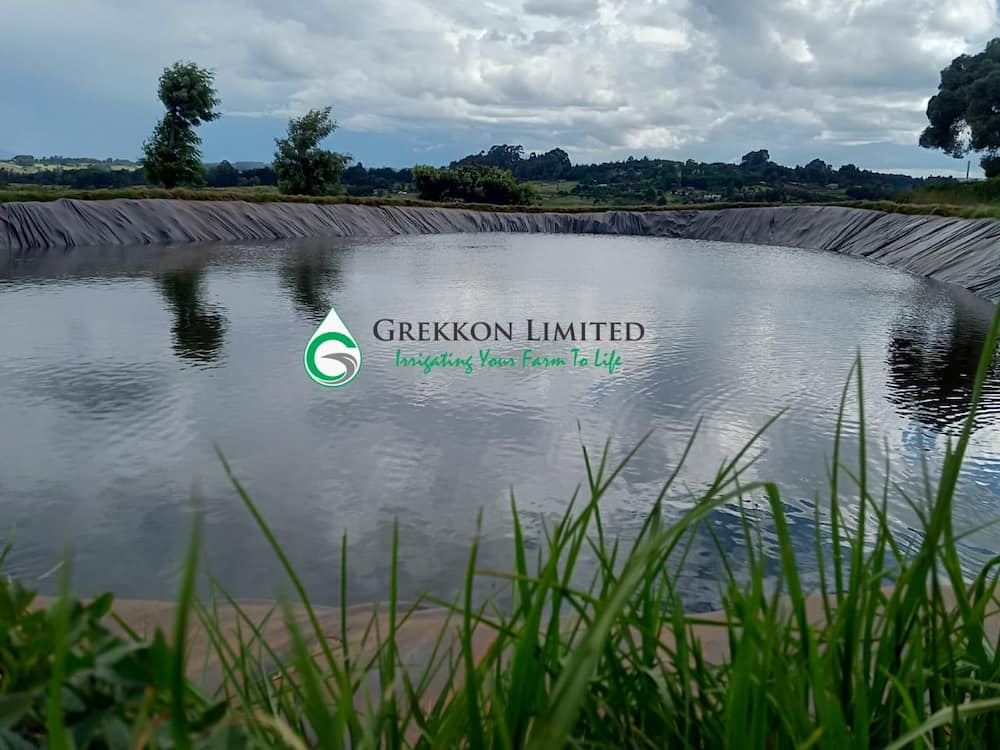 Amazing services, products Kenya's best irrigation systems company provide