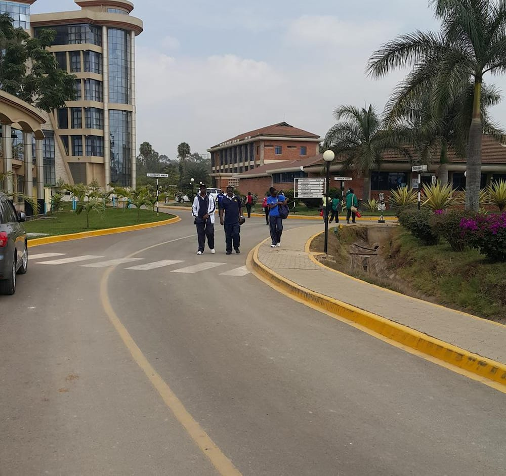 Kenya School of Monetary Studies courses offered, fee structure, contacts