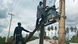 Utility Firm Kenya Power Set to Sack Employees in Cost-Cutting Plan