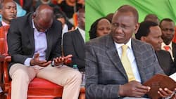Only God can stop William Ruto's journey to State House - Ainabkoi MP William Chepkut