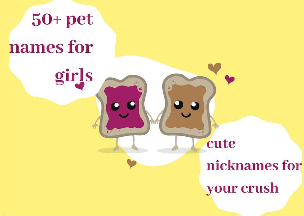 50+ pet names for girls: cute nicknames for your crush