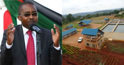 Troubled Murang'a water firm scores high in financial management despite fights from governor