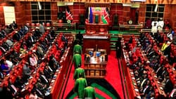 Majority of Kenyans Unhappy with Their Current MPs, Vow to Vote Them out in 2022, TUKO.co.ke Poll