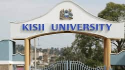 Kisii University layoffs: Over 150 employees in court to stop plans to sack them