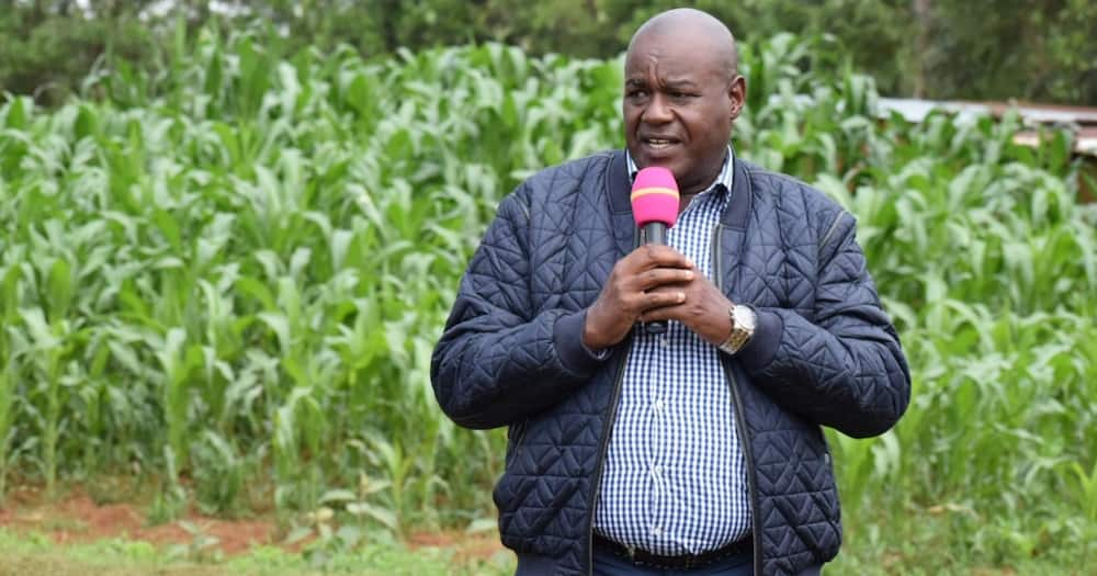 """William Ruto's man Kositany says he's part of dynasties: """"I am not a hustler"""