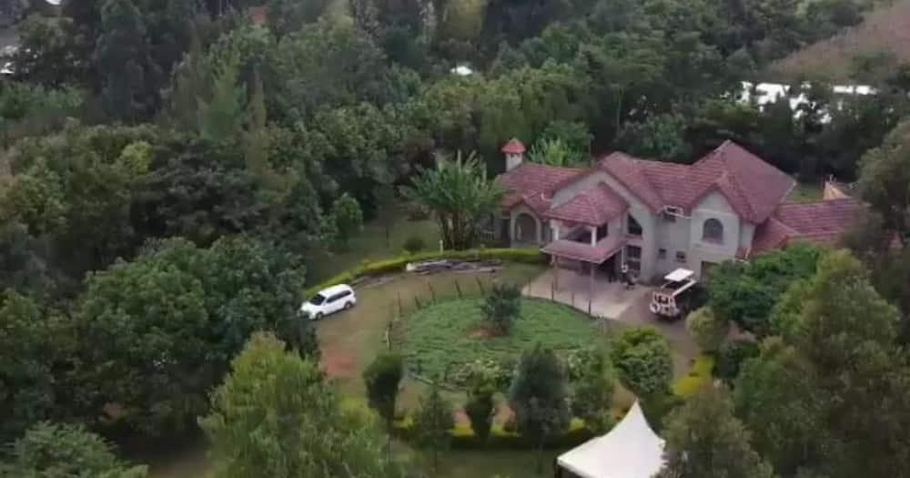 Magnificent photos of lawyer Nelson Havi's village bungalow