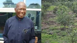 Moody Awori Gets Orders to Repossess Late Brother's 30-Acre Land from Trespasser