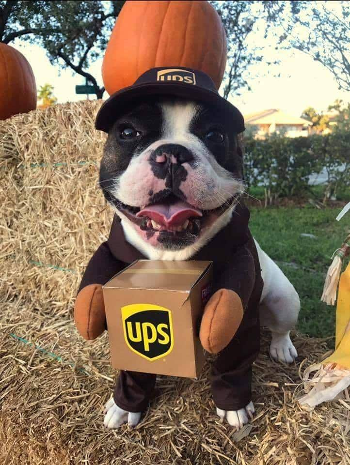 UPS Kenya
