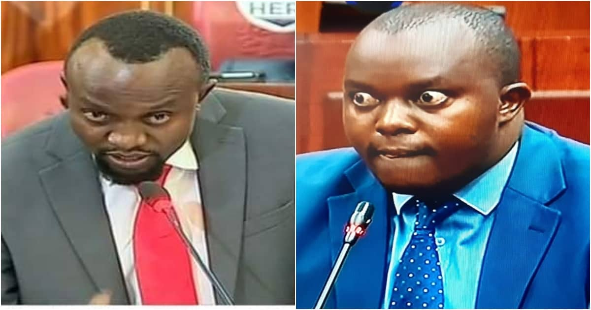 Ndegwa Njiiru steals the show during Waiguru's ouster in Senate