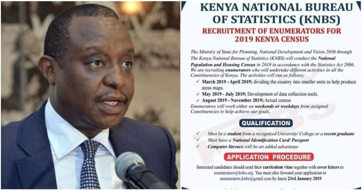Government Says 2019 Census Job Jpportunities are Fake ▷ Tuko co ke