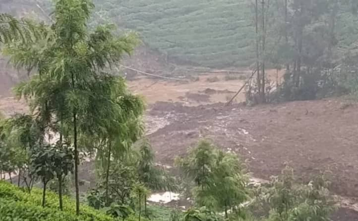 Over 2000 tea bushes swept away by landslide in Murang'a county