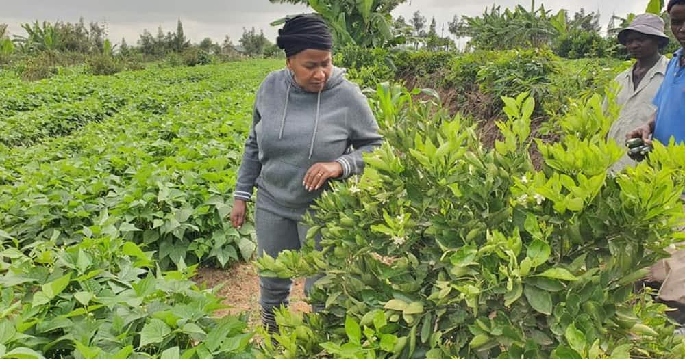 "Wavinya Ndeti proud as she shows off her impressive farm: ""Thank you Jesus"""