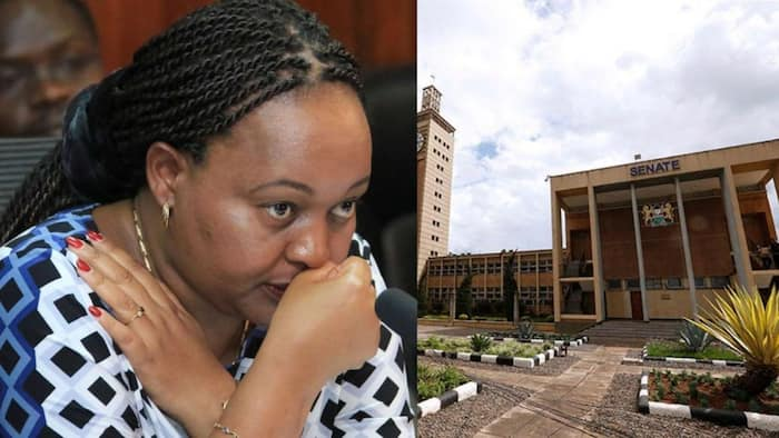 List of 11 senators proposed to hear Governor Waiguru's impeachment motion
