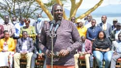 William Ruto Woos Nyanza Leaders, Promises to Revive Sugar Industry if Elected President