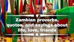 30+ best Zambian proverbs, quotes, and sayings about life, love, friends