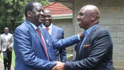 Bitter Cerellac: Storm in One Kenya Alliance as Principals Differ on Presidential Candidate