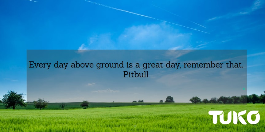 Awesome quotes