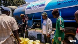 Kenyan NGO SHOFCO beats Red Cross' popularity for providing help during COVID-19 crisis - Survey
