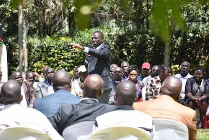 I will accept if I lose Jubilee nominations in 2022 - William Ruto