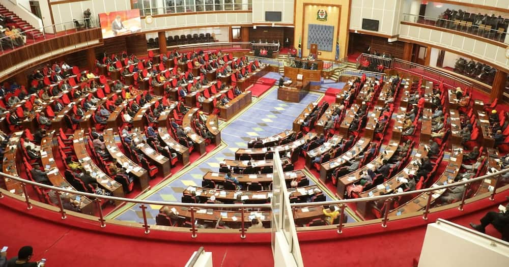 Newly Elected Tanzanian MP Perturbed to Learn Salaries, Allowances are Low, Not Like Kenya