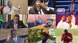 10 Richest Kenyan Politicians and Businesses They Own
