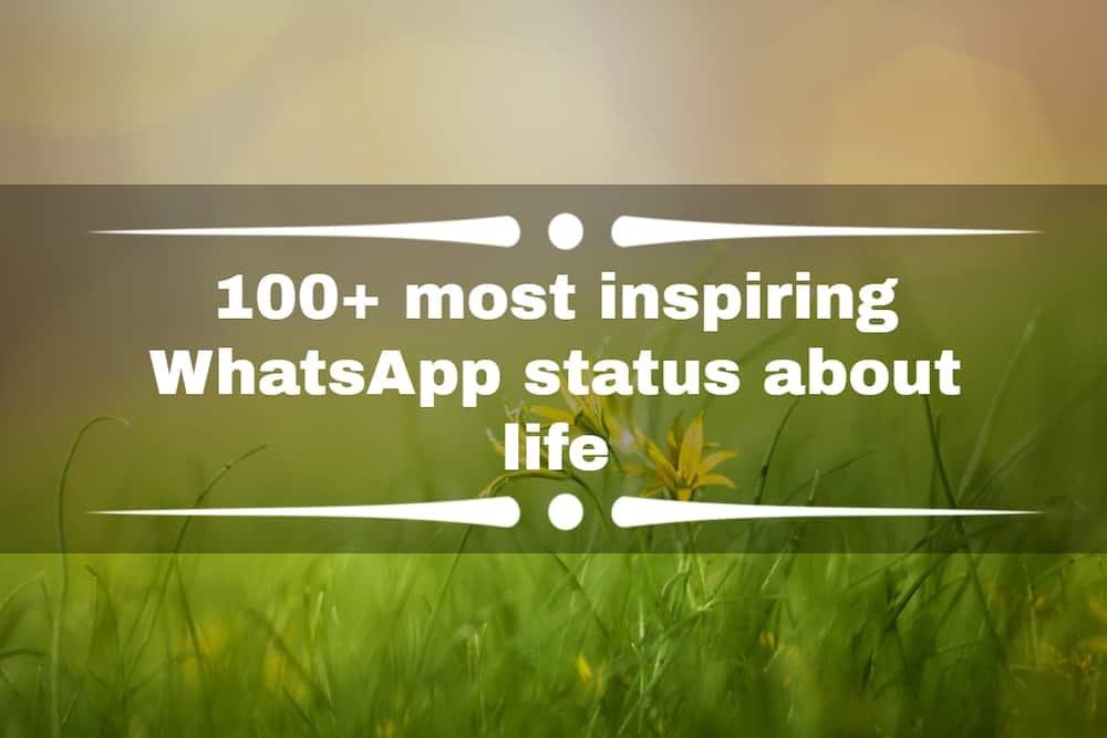 WhatsApp status about life