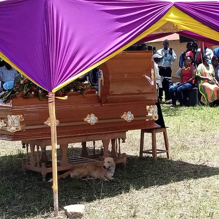 Othuol Othuol: Churchill awazomea wasanii, asema wanajichimbia kaburi