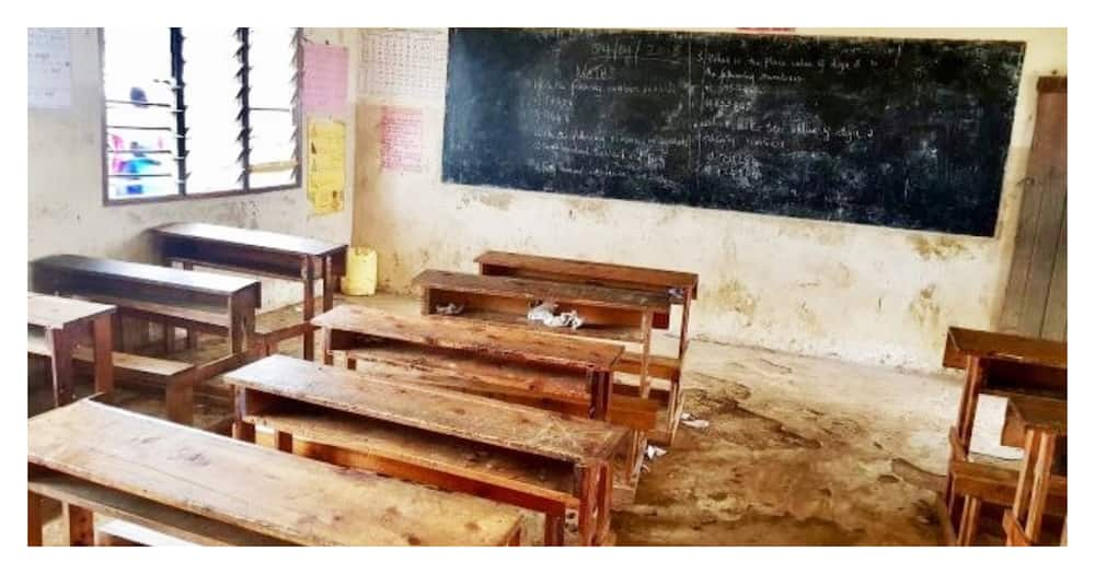 North Eastern: 1.2 million children drop out of school due to insecurity