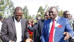 "Joshua Kutuny Hints at Supporting William Ruto: ""I'll Follow my People's Choice"""