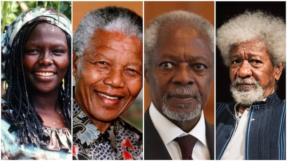 From left Wangari Maathai, Nelson Mandera, Kofi Annan, Albert Luthuli. The awarded Africans were inspiring leaders in their various field. Photo: Getty Images.