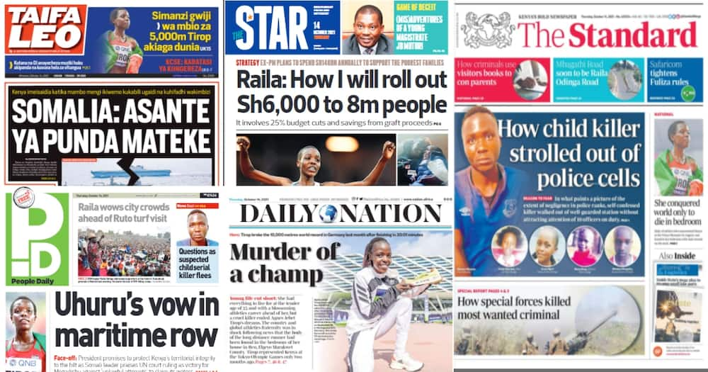Newspapers. Photo: Screengrabs from The Standard, Daily Nation, The Star, People Daily and Taifa Leo.
