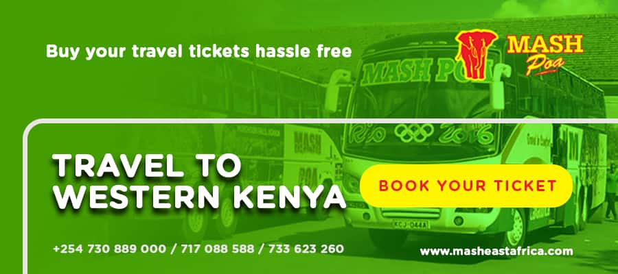 Mash Bus online booking, offices, routes and contacts