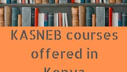 KASNEB courses offered in Kenya