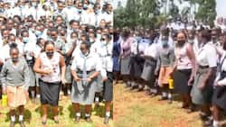 Gavana Waiguru Awafunza Wanafunzi Kusakata Densi ya Wimbo Sukari