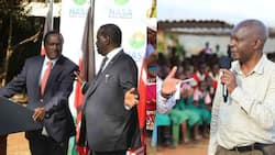 Raila Would Have Endorsed Kalonzo's 2022 Presidency if He Would Have Won 2017 Election, Kivutha Kibwana