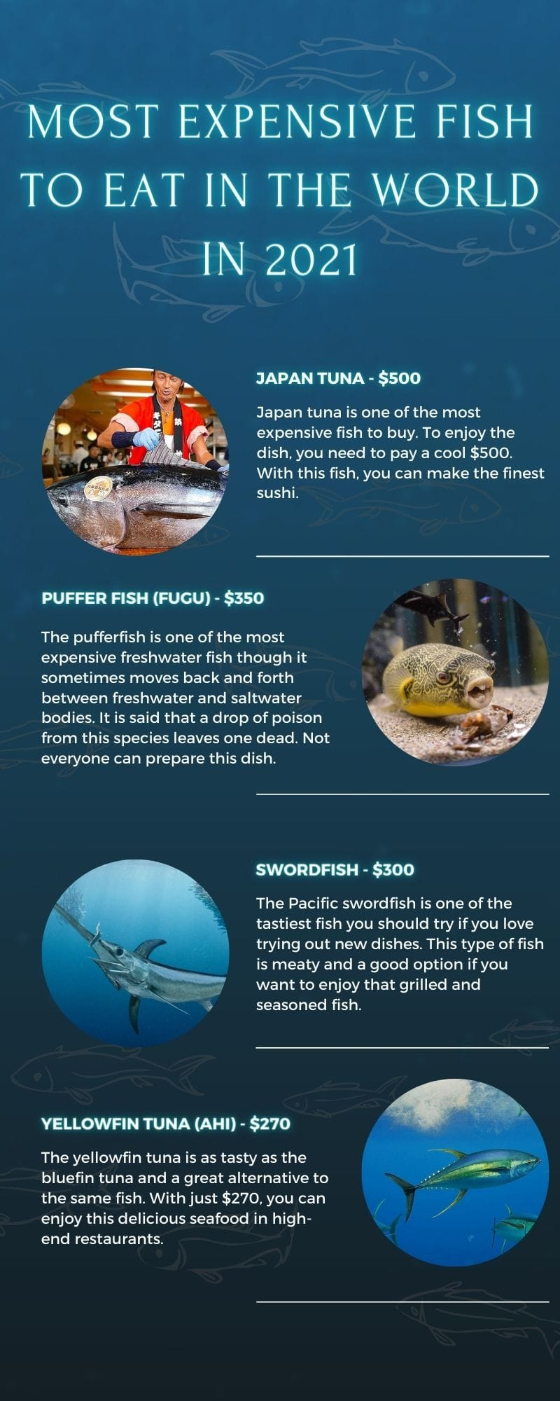 most expensive fish to eat