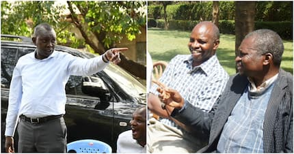 Veteran Uasin Gishu farmer cracks Kenyans after terming Ruto's ally intellectually challenged