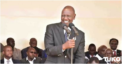 Ruto wants leaders fighting diversification of crops to stop, insists it's good for Kenya