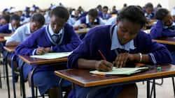Kiambu: Mtahiniwa wa KCSE Akabiliana na Polisi, Akataa Kukaguliwa, Kuvaa Maski