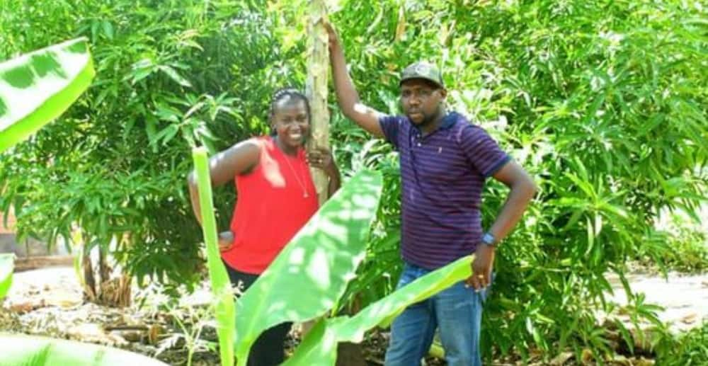 Garden of Eden: Kipchumba Murkomen's Photo with Wife? in His Home County Excites Netizens