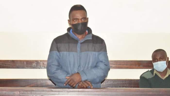 Jamaa Afungwa Mwaka 1 Gerezani Kwa Kukata Mti Katika Msitu wa Ngong