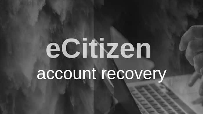 eCitizen account recovery: How to reset your account, change password and phone number