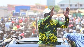 William Ruto Faces Resistance in Busia as Rowdy Youths Block His Motorcade