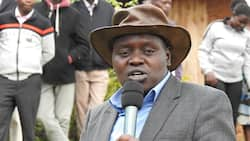 Jubilee Delivered More Before William Ruto's Functions Were Taken by a CS, Senator Cherargei