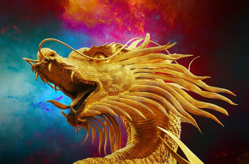 last names that mean dragon