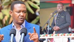 Gavana Alfred Mutua Asema Ruto Anatakiwa Kulindwa Kama Rais Mtarajiwa