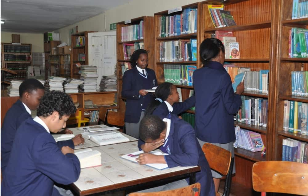 Consolata School admissions, fees structure, KCSE results, location, contacts