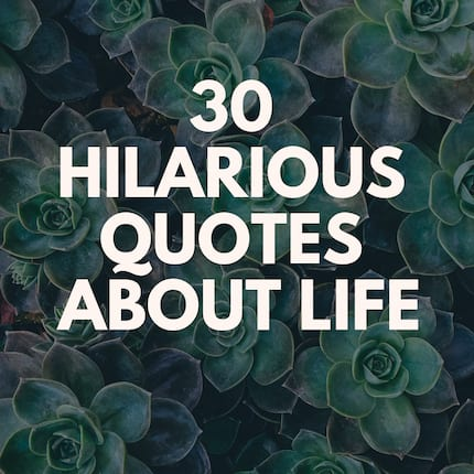 Everyone loves these best hilarious quotes about life in general